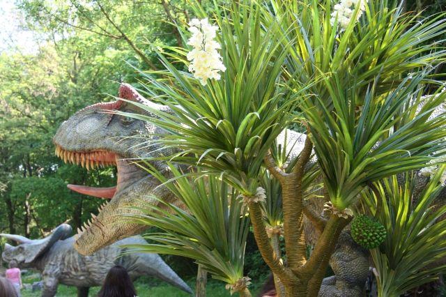 Palma v dinoparku - v pozadí dinosaurus