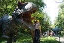 Dinosaurie zuby - vyzerajú dost strašidelne